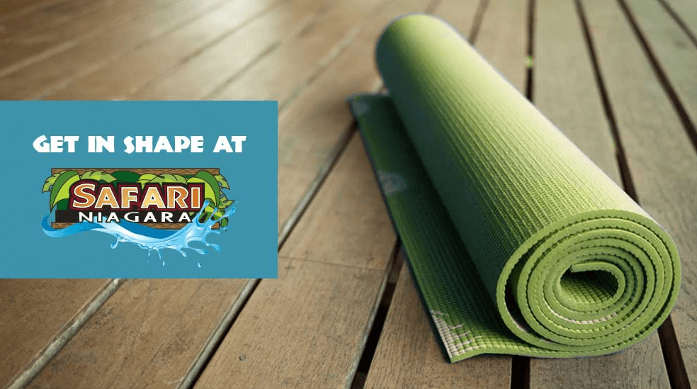 Get in Shape and Workout at Safari Niagara