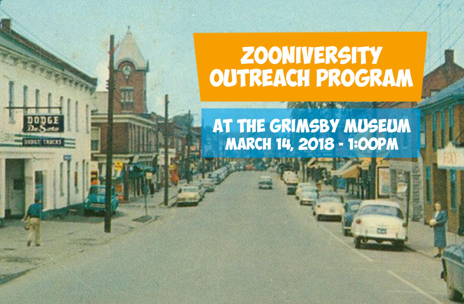 Zooniversity at the Grimsby Museum